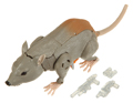 Picture of Rattrap
